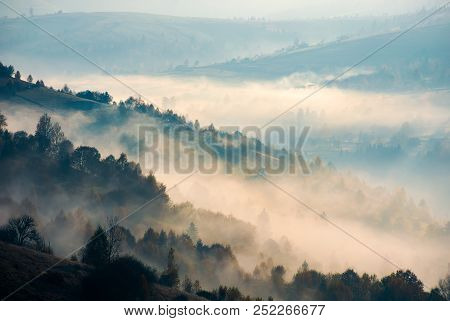 Trees On Hill Side In Morning Fog. Beautiful Autumn Background Of Mountainous Area