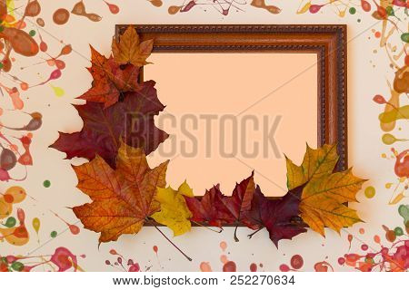 Frame And Colored Autumn Leaves On Pastel Background