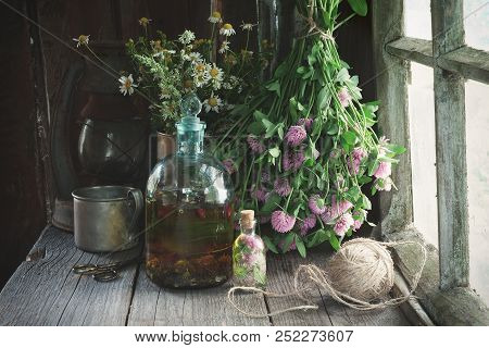 Clover Tincture Or Infusion, Essential Oil Bottle And Medicinal Herbs Bunches Near Window Inside The