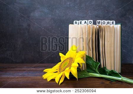 Vintage Old Books With Words Read More And Sunflower. Open Book With Bright Yellow Flower And Text R