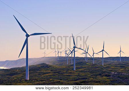 Landscape Of Albany Wind Farm  In Western Australia.