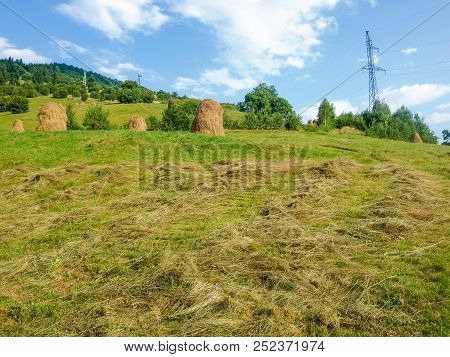Hayfield On A Mountain Slope With Bevelled Hay And Haystacks In The Carpathian Mountains