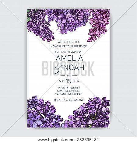 Vector Hand Drawn Invitation For The Wedding. Card With Lilac Flowers.