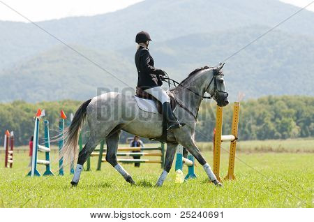 "ARSENEV, RUSSIA - SEPTEMBER 03:  Unidentified rider in action rides horse show jumps at the Riding show ""The Cup of the Governor of the Primorsky Territory, 2011"" on Sept 03, 2011 in Arsenev, Russia poster"
