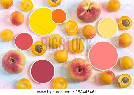 Ripe Apricots, Flat Peaches And Color Samples. Natural Color Palette. Shades Of Different Colors. Di