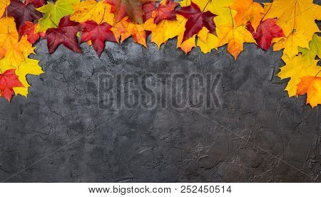 Colorful Autumn Leaves On A Black Textural Background