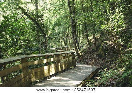 Zigzag Wooden Walkway Found In Arouca Municipality. Paiva Walkways In Aveiro, Portugal