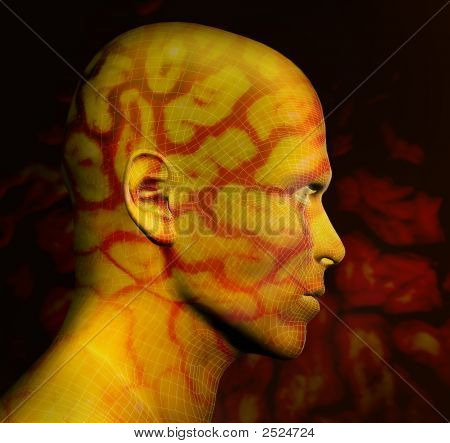 Abstract 3D Render Of Human Head