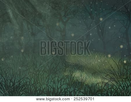Enchanted Forest Copy Space Background. Enchanted Forest Copy Space Background For Text. Illustratio