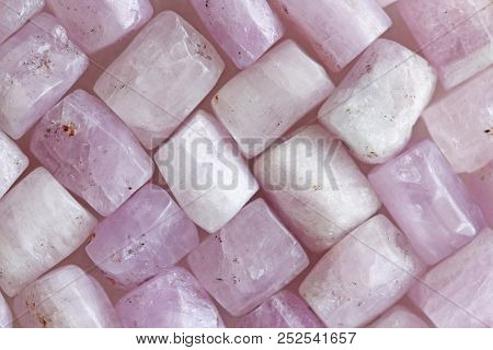 Pink Purple Background Of Natural Stones. Kunzite Is A Natural Pink Stone For Creating Jewelry. Natu
