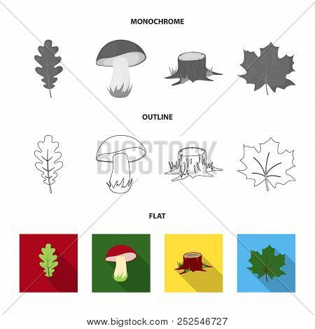 Oak Leaf, Mushroom, Stump, Maple Leaf.forest Set Collection Icons In Flat, Outline, Monochrome Style