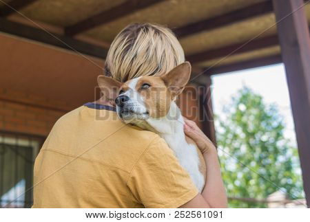 Portrait Of Basenji Dog In Embrace Of Its Cute Master Resting In Verandah