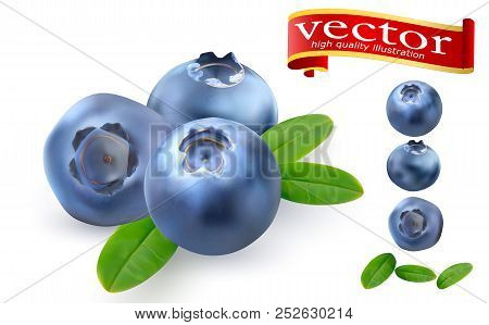 Juicy Ripe Blueberries With Green Leaves On A White Background. 3d Realistic Vector Of High Detail.