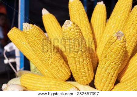 Yellow Corn On Stick. Boiled Corn For Sale. Sweetcorn Streetfood. Summer Street Food Closeup Photo.