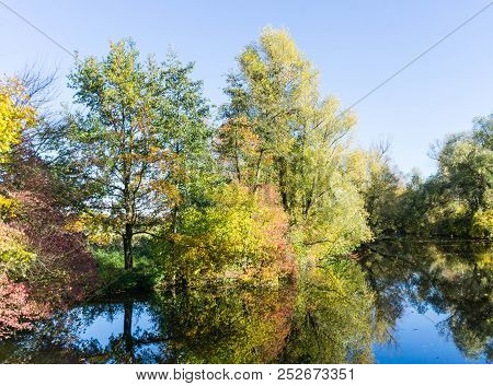 Autmn River Trees Forest Reflection Idyllic Fall