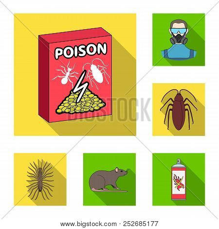 Pest, Poison, Personnel And Equipment Flat Icons In Set Collection For Design. Pest Control Service