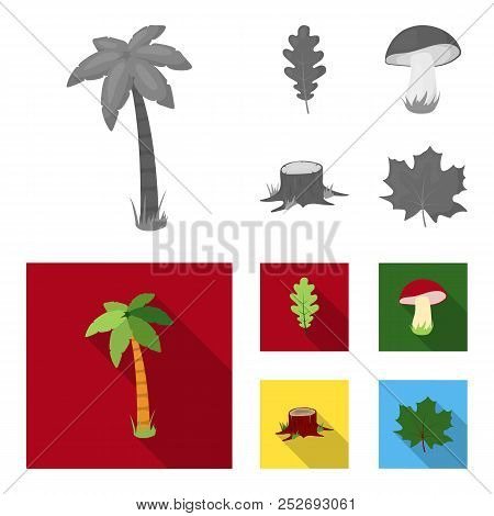 Oak Leaf, Mushroom, Stump, Maple Leaf.forest Set Collection Icons In Monochrome, Flat Style Vector S