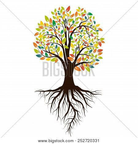 Autumn Silhouette Of A Tree With Colored Leaves. Tree With Roots. Isolated On White Background. Vect