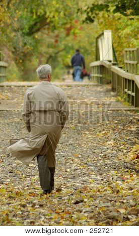 Business Man On Wooded Path