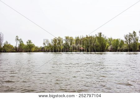 The River Bank With Trees. Forest On The River Bank. View From The River.