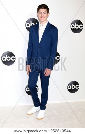 LOS ANGELES - AUG 7:  Mason Cook at the ABC TCA Party- Summer 2018 at the Beverly Hilton Hotel on August 7, 2018 in Beverly Hills, CA