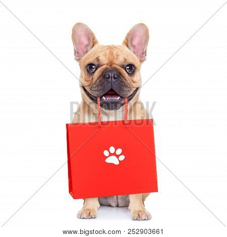 French Bulldog  Dog With Shopping Bags Ready For Discount And Sale At The  Mall, Isolated On White B