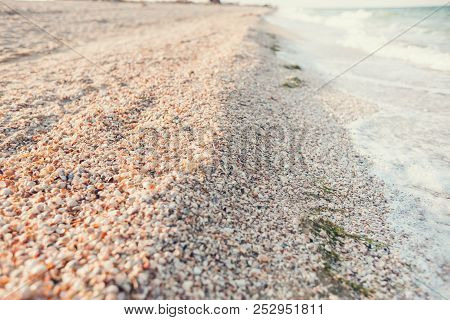 Coast Of The Sea And Wave. Shore From Seashells. Ocean Coast Close Up.