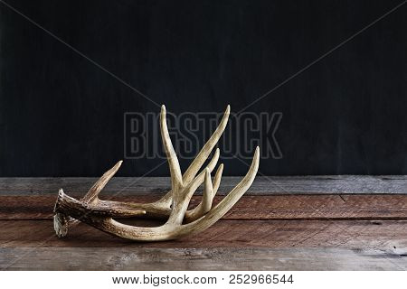 A Pair Of Real White Tail Deer Antlers Over A Rustic Wooden Table Against A Black Background Used By