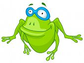 Cartoon Character Frog Isolated on White Background. Vector. poster