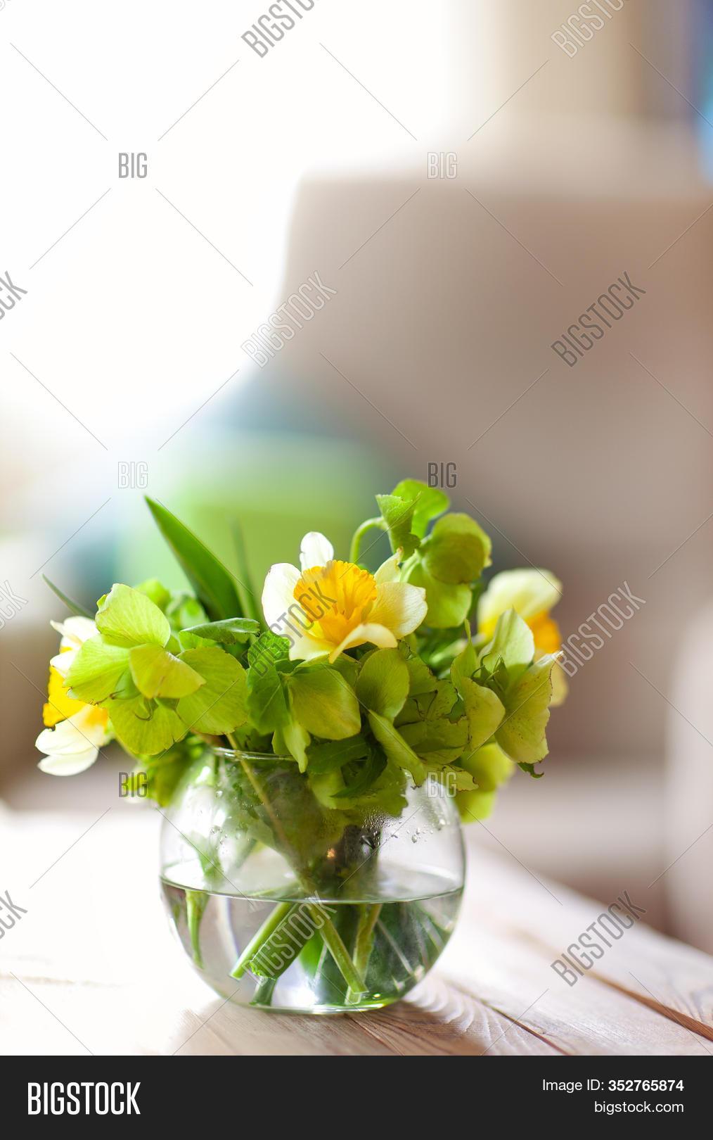 Round Vase Clean Water Image Photo Free Trial Bigstock