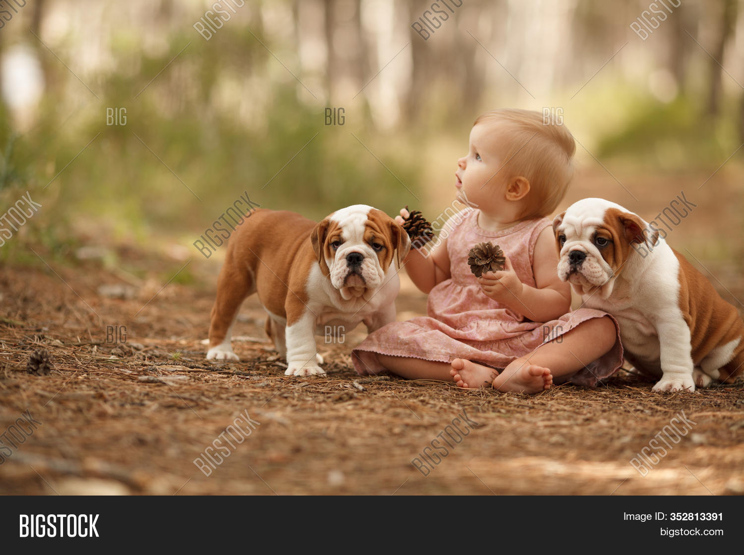 Cute Little Baby Two Image Photo