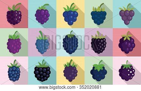 Blackberry Icons Set. Flat Set Of Blackberry Vector Icons For Web Design