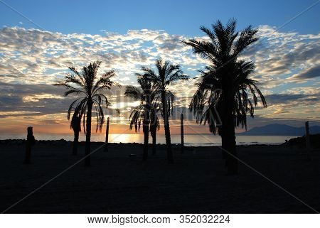 Beach With Palm Trees Silhouetted At Sunset, Puerto Cabopino, Marbella, Costa Del Sol, Malaga Provin