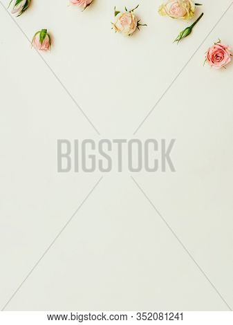 Floral Minimalist Background. Natural Composition. Pink Yellow Rose Buds On Sage Green Backdrop.