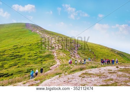 Tourists Ascending The Mountain. Ukrainian Carpathians, Hoverla
