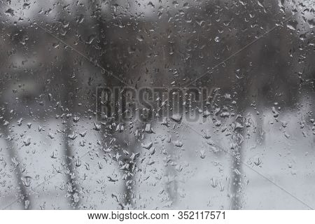Through The Windowpane In Raindrops, Silhouettes Of Trees Are Visible.