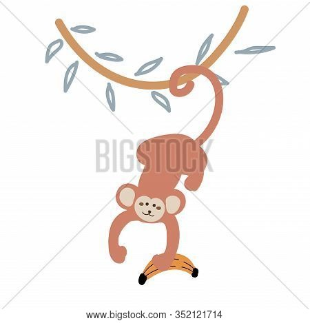 Cute Cartoon Monkey Hanging Down From A Liana Vector Childish Illustration. Funny Jungle Monkey Anim
