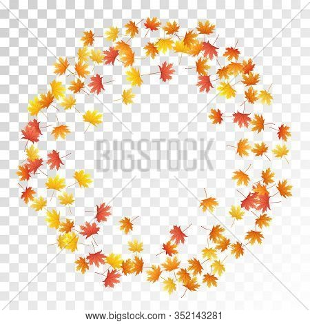 Maple Leaves Vector, Autumn Foliage On Transparent Background. Canadian Symbol Maple Red Orange Gold