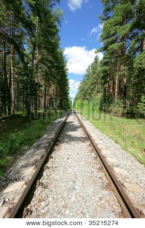 The Lonely Railway In Taiga