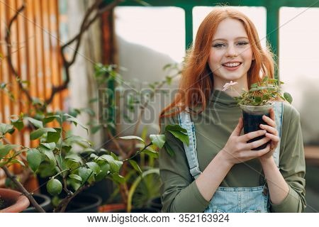 Home Gardening Concept. Young Pretty Woman Portrait With Flower Pot Planting Plants. Spring Home Gar