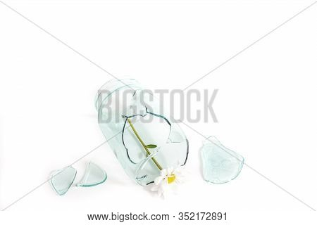 Glass Jar Damaged Cracked And Cracked, Splinters On A White.flower Symbol Of Love. Concept Of Unhapp