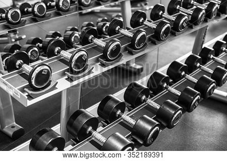Set Of Different Weight Dumbbells In The Gym