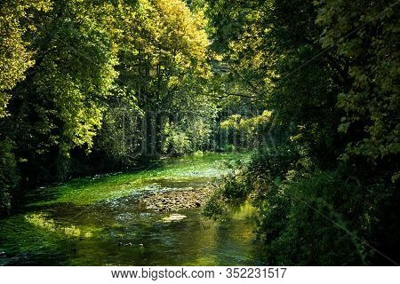 Famous River Sorgue With Beautiful Green Water Plants And Trees Around In Hot Summer Sunny Day In Fo