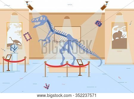 Museum Hall Interior. Mesozoic Era Theme Exposition. Dinosaur Skeleton, Fossils And Footprints. Exhi