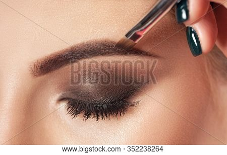 Make-up Artist Does Eyebrow Make-up To A Woman With Smoky Eyes Makeup. Beautiful Thick Eyebrows Clos