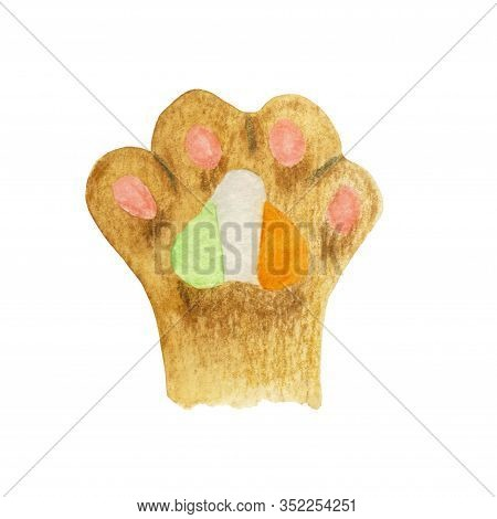 Cats Foot With Irish Flag Pad. Hand-drawn Illustration Of A Irish Cat Paw With Watercolor And Colore