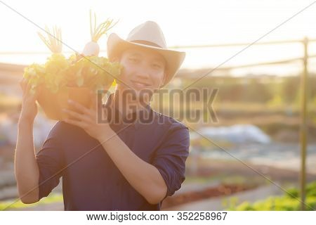 Portrait Young Asian Man Smiling Harvest And Picking Up Fresh Organic Vegetable Garden In Basket In