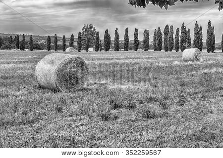 Hay Bales On The Field After Harvest, Countryside Landscape In Italy