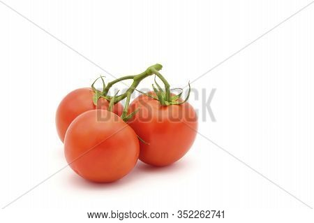 Three Vine Ripened Red Tomatoes Photographed On A White Background With Ample Copy Space.