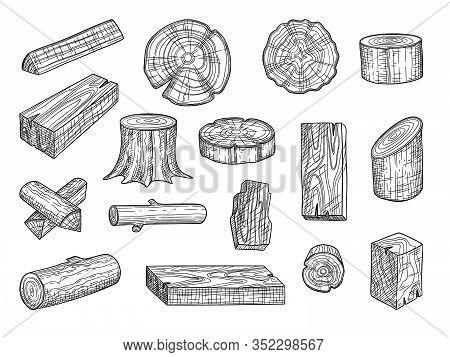 Lumber. Wooden Trunks Branch Oak Stacked Log From Tree Vector Hand Drawn Set. Lumber Trunk Wooden, H